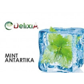 MINT ANTARTIKA 10 ml DELIXIA